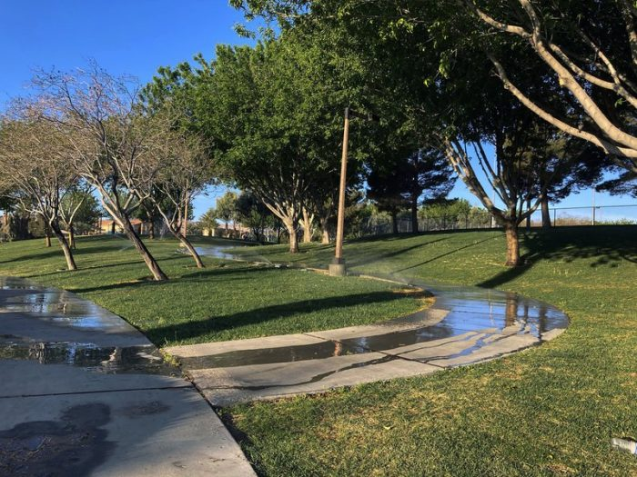 Water-worried Vegas wants useless grass a thing of the past