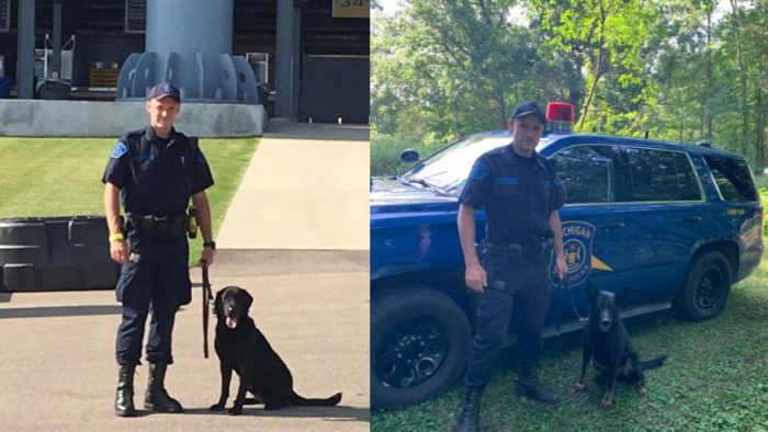 """MSP Lansing Post welcomes two new canine partners """"Ike & Mike"""""""